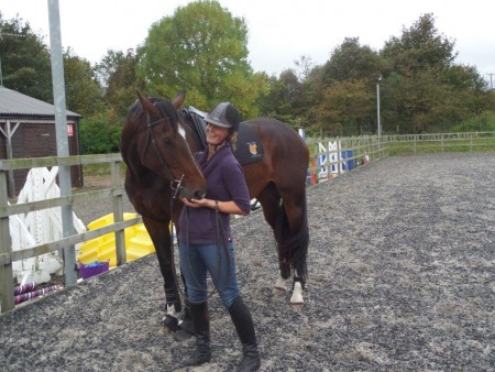 Training white sands equestrian for 10 minute trainer door attachment